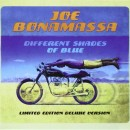 Joe Bonamassa - Different Shades of Blue (2014)