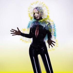 Björk - Vulnicura (2015)
